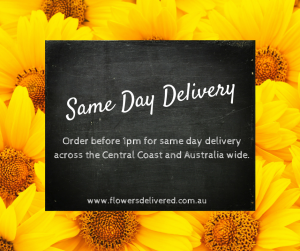 Boydita Flowers Delivered Same Day Delivery