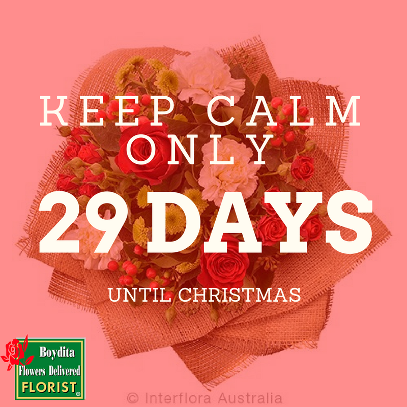 Keep calm only 29 Days until Christmas! / The Boydita Flowers ...