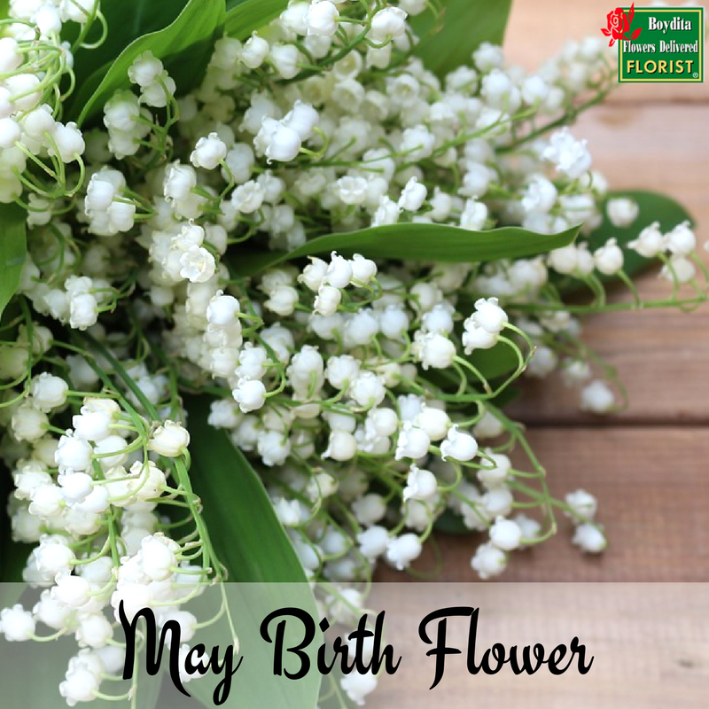 May Birth Flower / The Boydita Flowers Delivered Blog