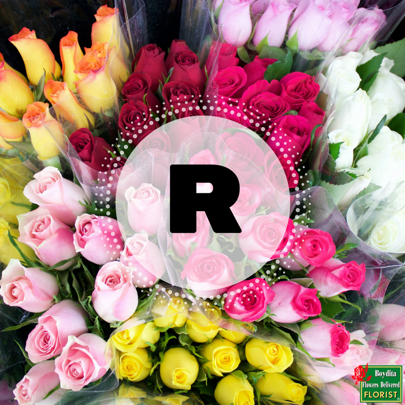 Can you name a flower beginning with the letter r the boydita this entry was posted in boydita news and tagged boydita flowers delivered florist flower deliveries on may 17 2017 by boydita altavistaventures Choice Image