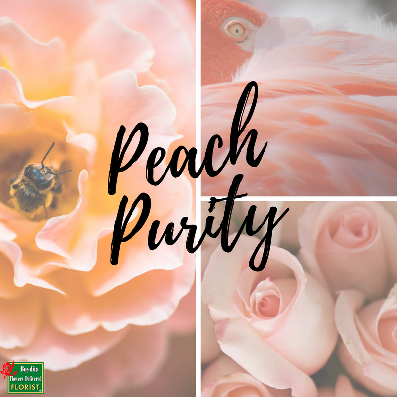 Peach Purity